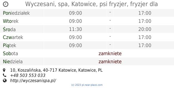 Wyczesani Spa Katowice Psi Fryzjer Fryzjer Dla Psów I Kotów